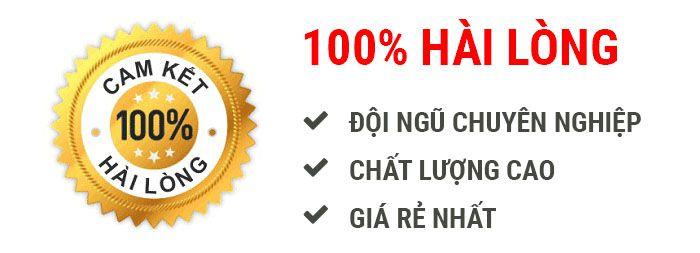 Thông tắc vệ sinh tại Thanh Niên 0971.147.333 - Thông bể phốt
